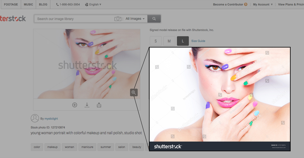 About the Updated Watermark - Shutterstock Contributor